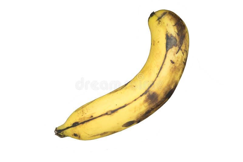 背景香蕉查出的白色 库存图片