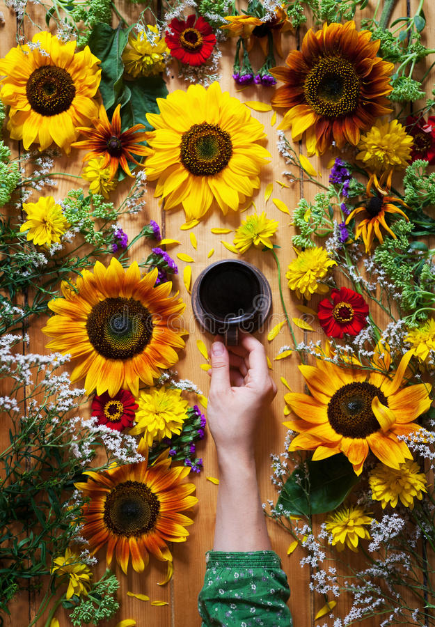 他们背景鸟笼概念花卉的夏天 一个杯子咖啡在一只妇女` s手上在木背景用向日葵和野花 免版税图库摄影