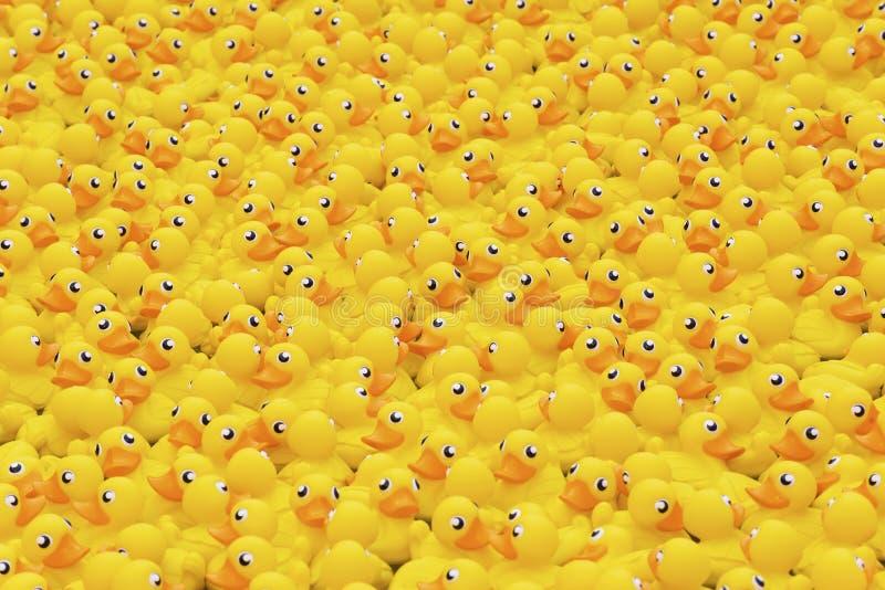背景鸭子查出的玩具空白黄色 免版税库存照片