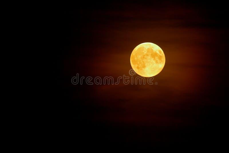 背景黑暗的充分的薄雾月亮夜空 免版税库存照片