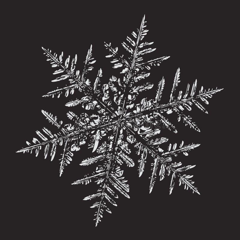 背景黑色装饰新的雪花白色年 向量例证