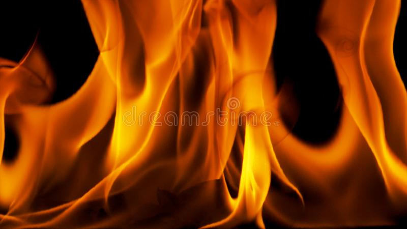 背景黑色详细资料火软绵绵地发火焰好高亮度显示垂直 库存图片