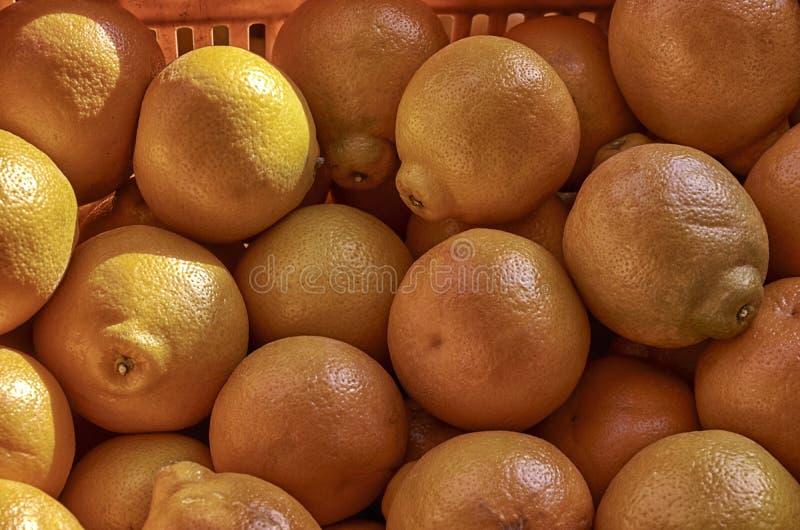 背景,成熟果子,自然颜色 免版税库存图片