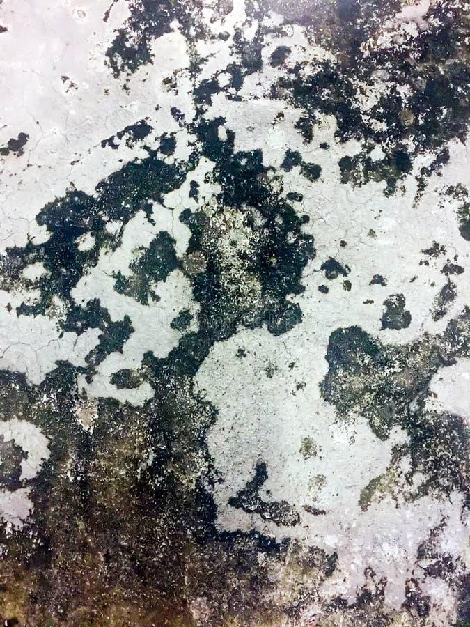 背景水泥样式 免版税库存图片