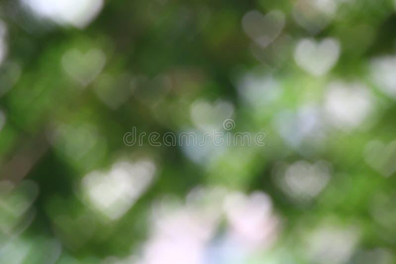 背景bokeh心形的软的浅绿色的模糊的淡色,华伦泰图表抽象派明亮的美好的背景 免版税库存图片