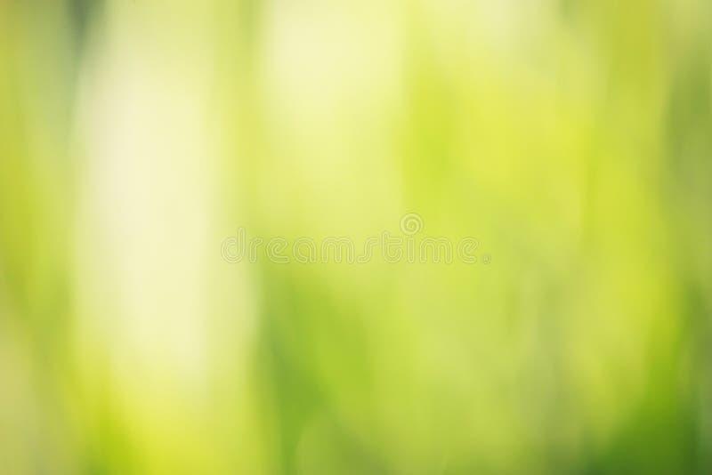 背景bokeh绿色 图库摄影