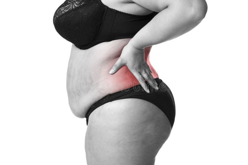 背部疼痛,肥胖妇女以腰疼,在白色背景隔绝的超重女性身体 库存照片