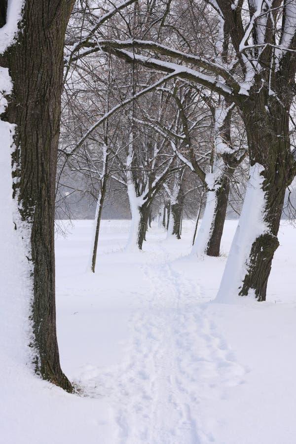 胡同在冬天 免版税库存图片