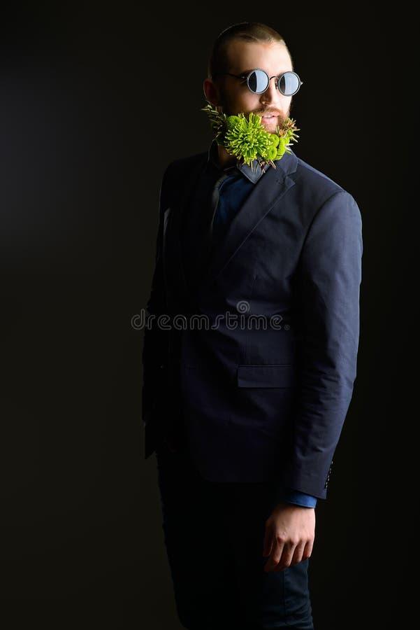 胡子概念 免版税库存图片