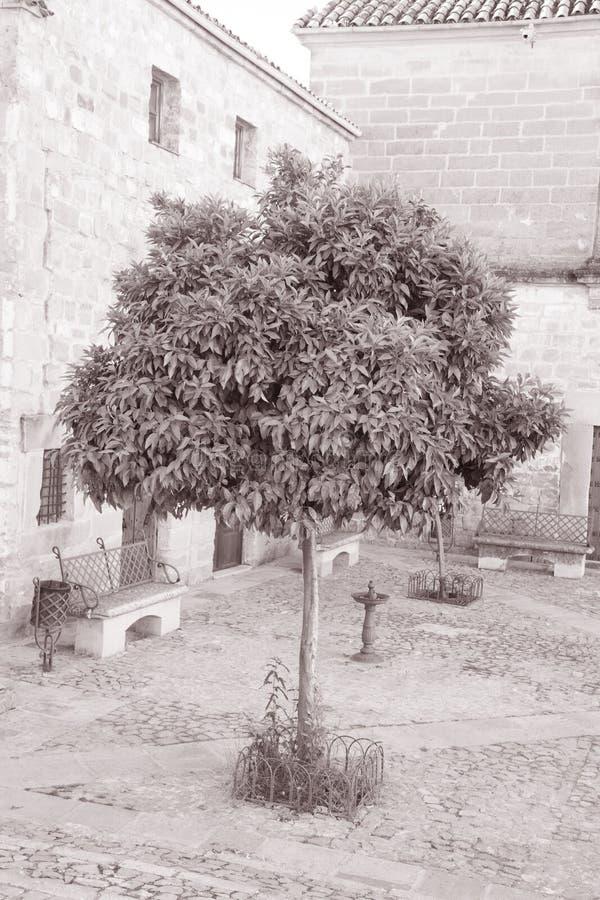 胡安de巴伦西亚广场,宇部,安大路西亚,西班牙 库存照片