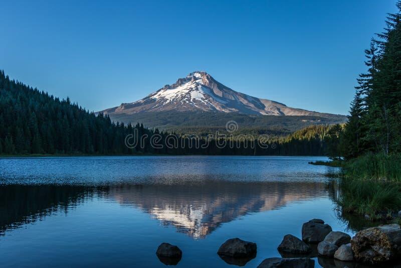 胡德山的反射在Trillium湖俄勒冈 库存图片