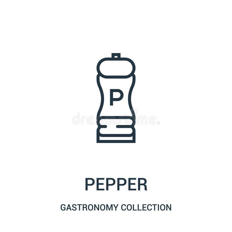 胡椒从美食术汇集汇集的象传染媒介 稀薄的线胡椒概述象传染媒介例证 库存例证