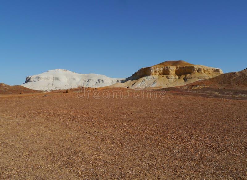 胡椒和盐在南澳大利亚 免版税图库摄影