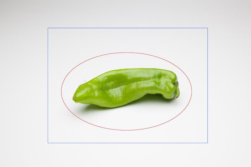 胡椒有很多维生素 图库摄影