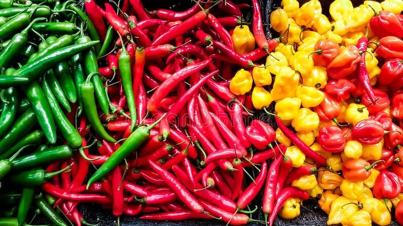胡椒的辣椒五颜六色的混合 免版税图库摄影