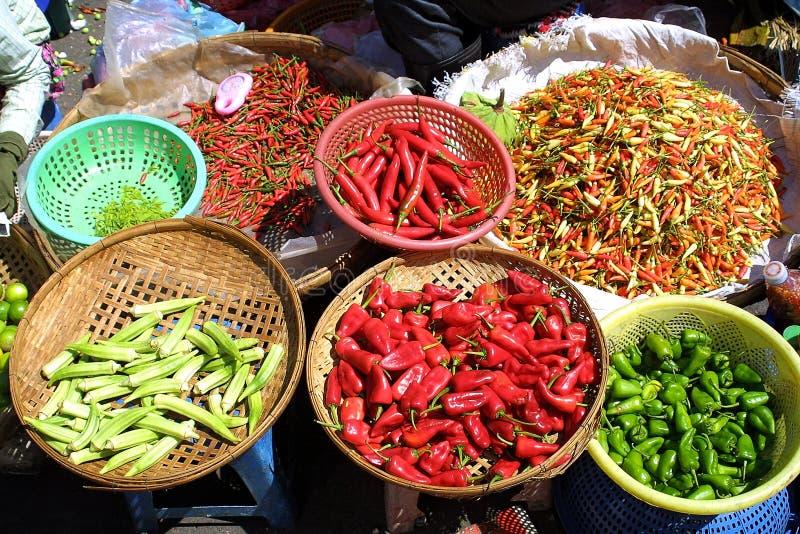 胡椒种类 库存图片
