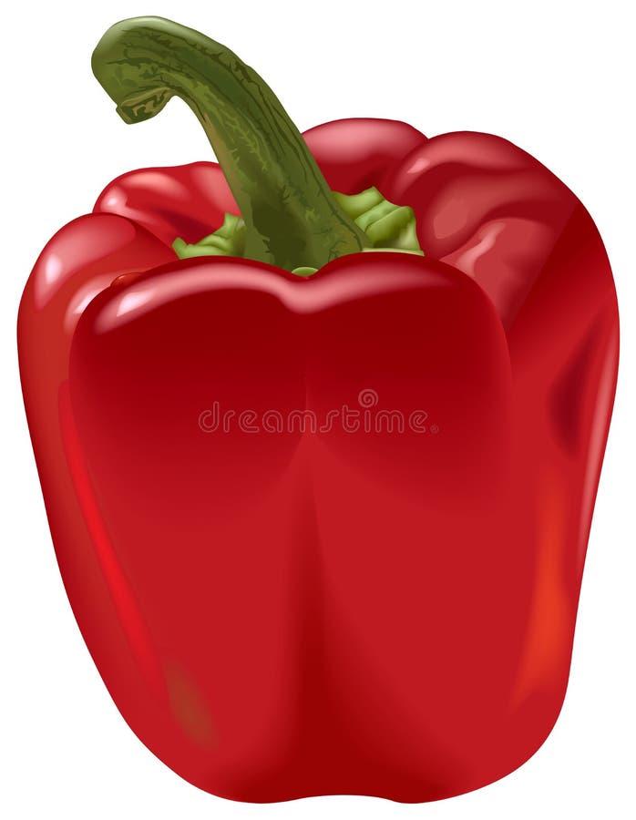 胡椒红色 向量例证