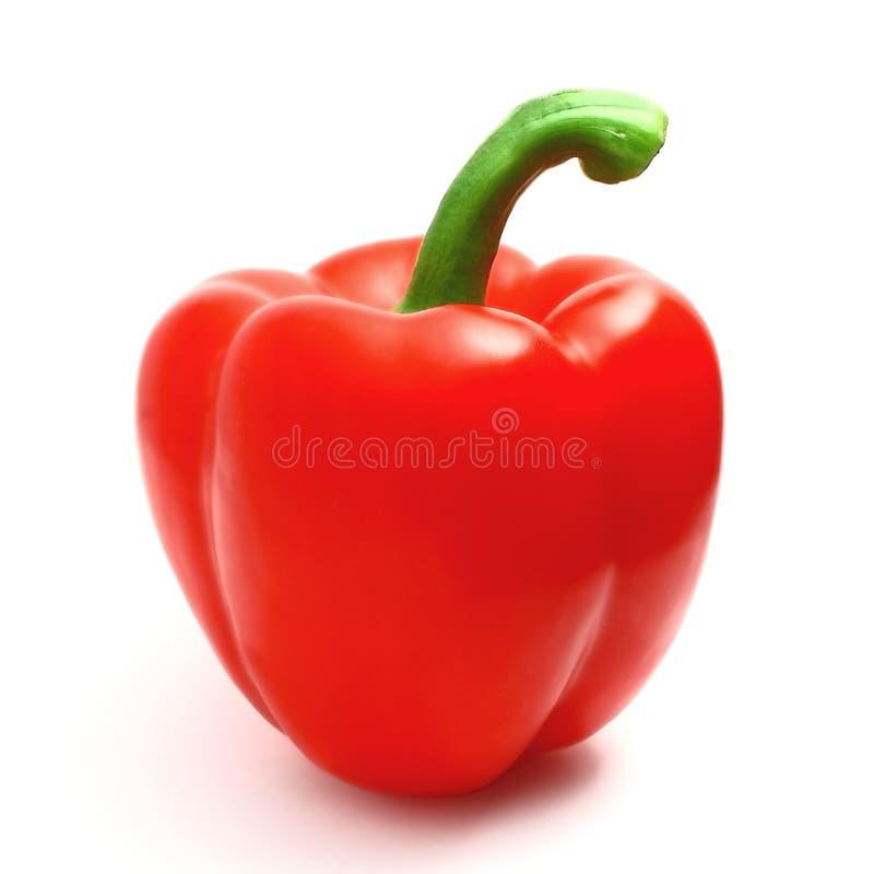 胡椒红色 免版税库存图片