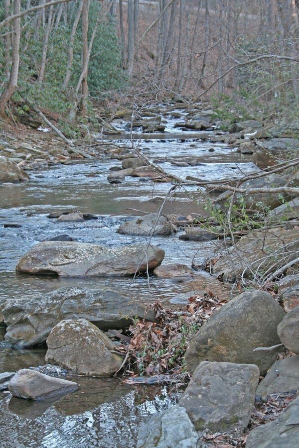 胡说的溪在阿什维尔北卡罗来纳 免版税库存图片