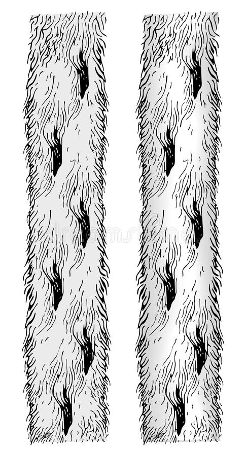 胳膊外套毛皮向量 向量例证
