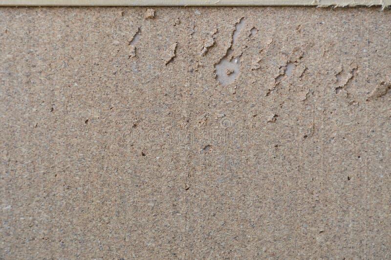 胶合板从猫爪子的noticeboard抓痕 免版税库存照片