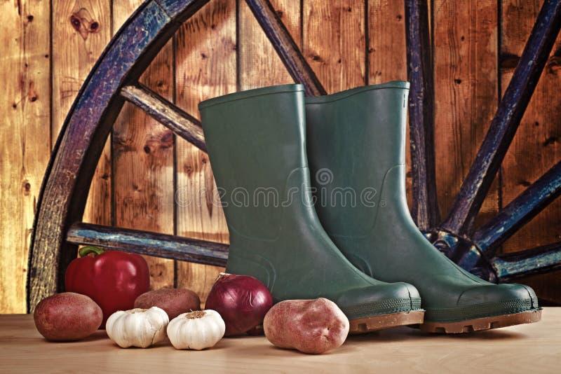胶靴和各种各样的菜 库存照片