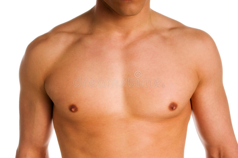 胸口 免版税图库摄影