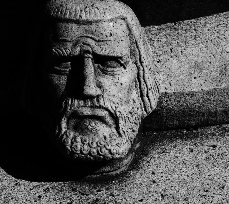 胸象和老有胡子的瑞典男性 免版税库存图片