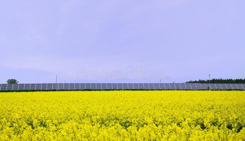 能源域夏天 库存照片