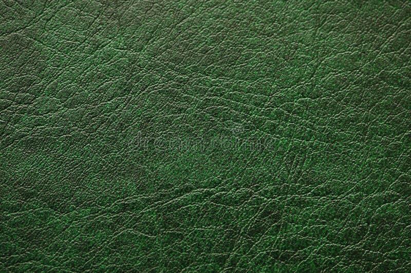 能绿化皮革模式 免版税库存照片