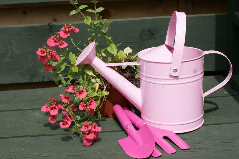 能childs桃红色工具浇灌 库存照片