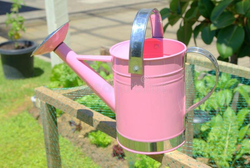 Download 能childs桃红色浇灌 库存图片. 图片 包括有 没人, 家庭, 新鲜, 夏令时, 对象, 设备, 灌溉 - 22355131