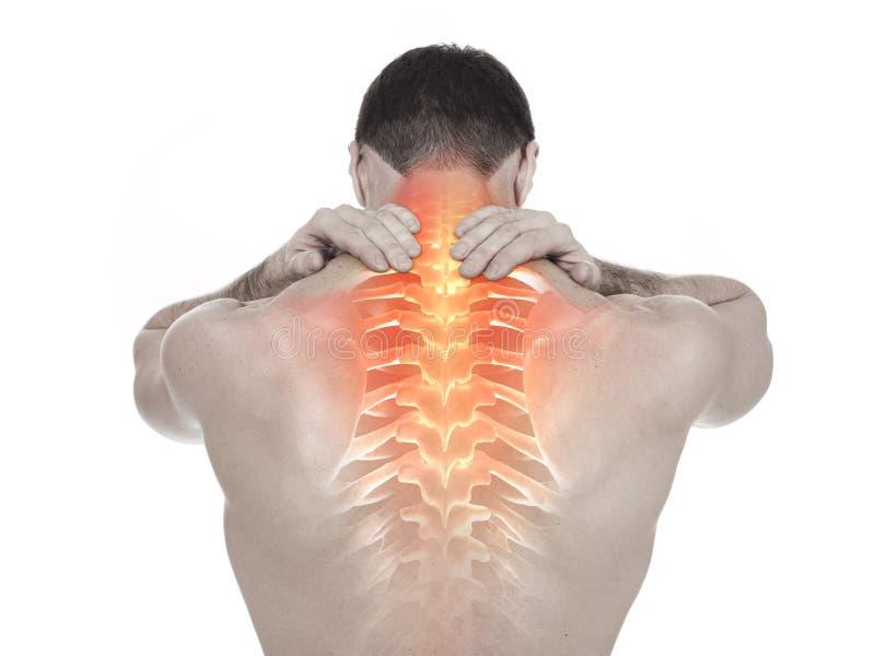 脊椎痛苦 图库摄影