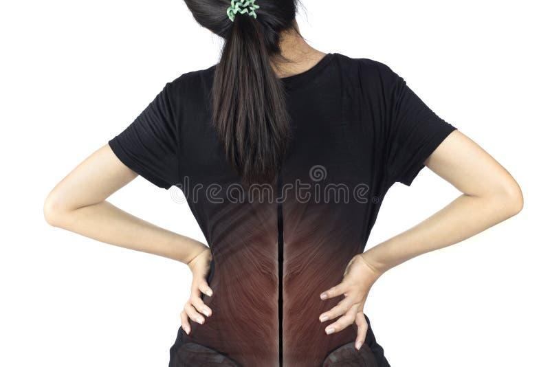 脊椎肌肉损伤 免版税库存图片