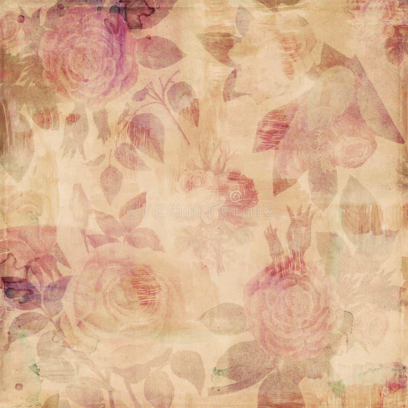 脏的植物的葡萄酒玫瑰破旧的背景 向量例证
