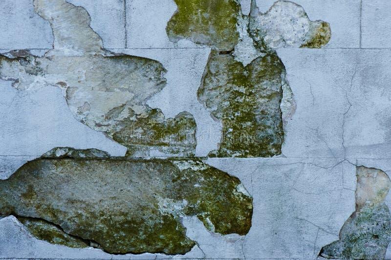 脏的混凝土墙背景或构造 免版税库存图片