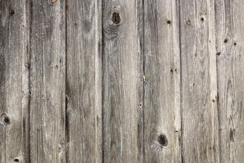 脏的真正的云杉的板条纹理 库存图片