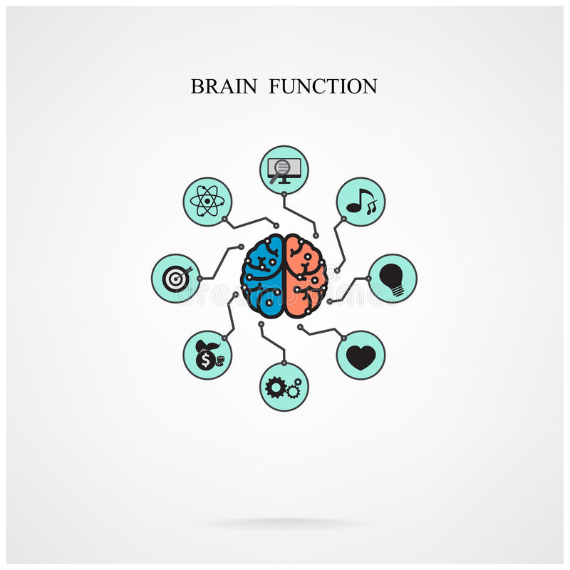 脑子作用的概念教育和科学的,事务si 库存例证