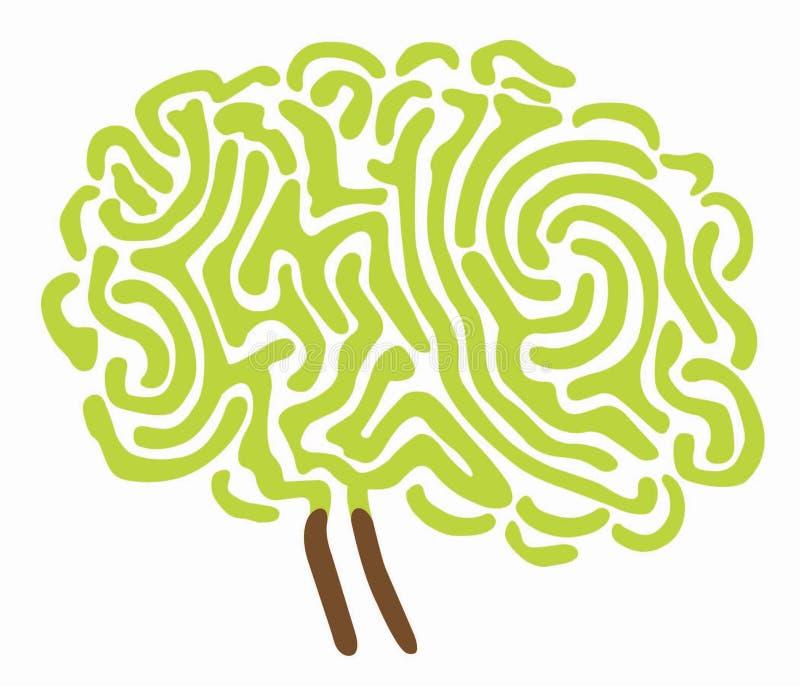 脑子例证结构树 皇族释放例证