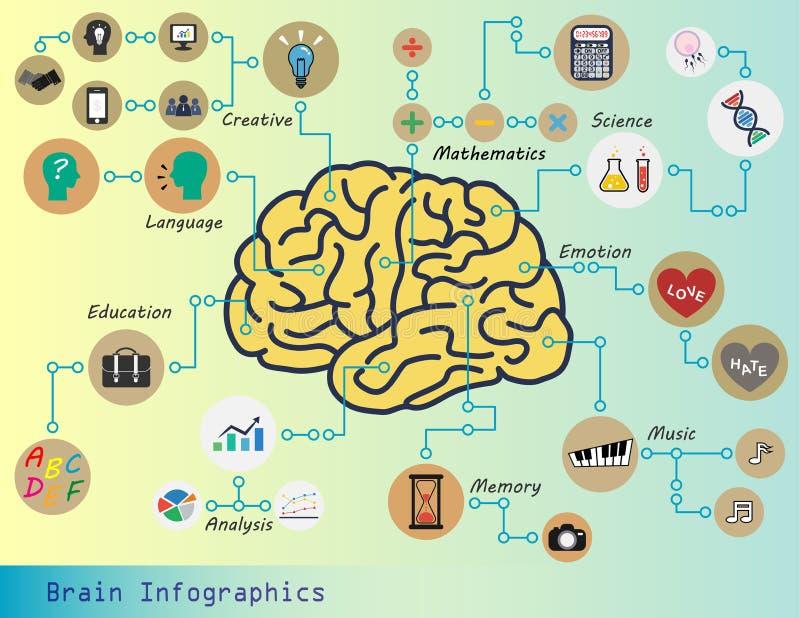 脑子信息图表 皇族释放例证