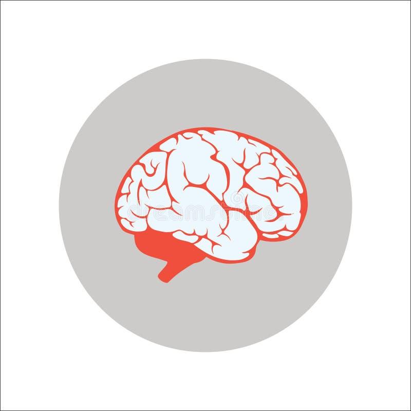 脑子平的象传染媒介 向量例证