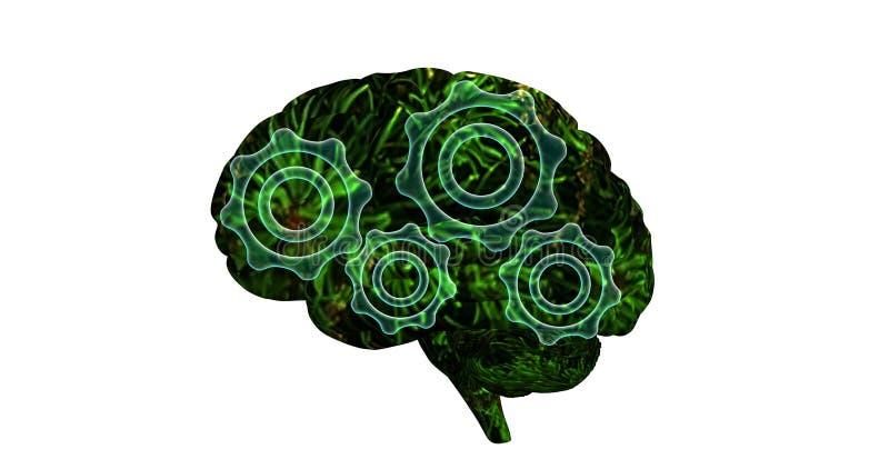 脑子机制 向量例证