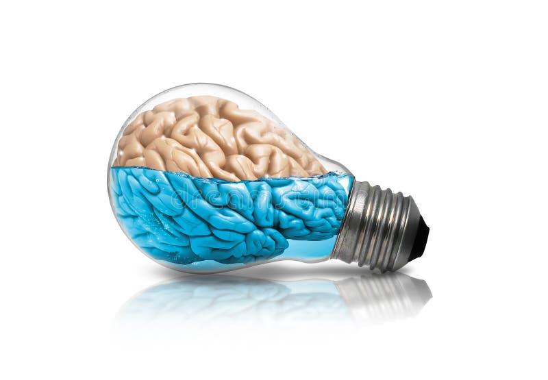 脑子灯想法 免版税图库摄影