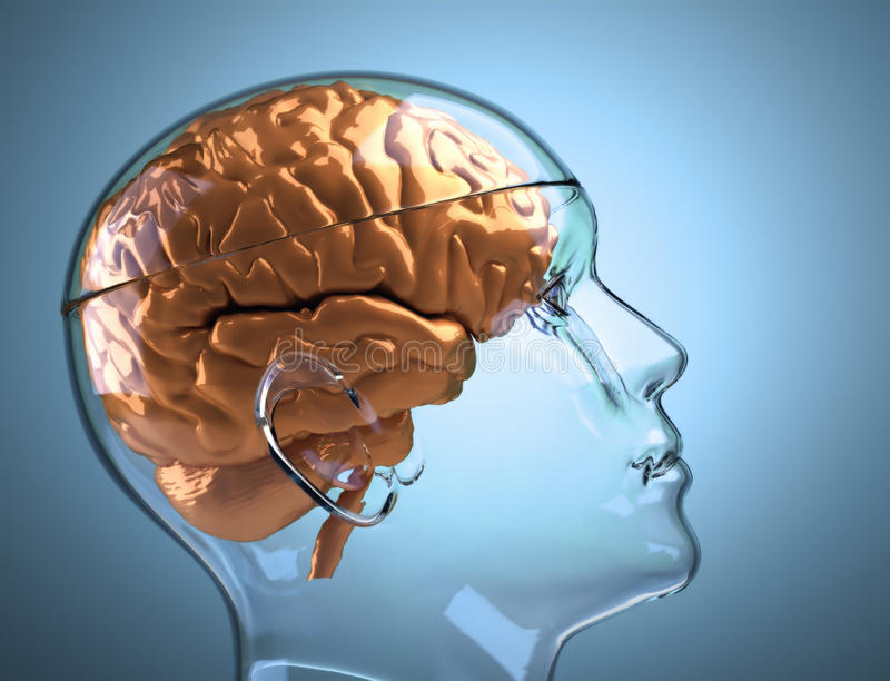 脑子玻璃顶头人 向量例证