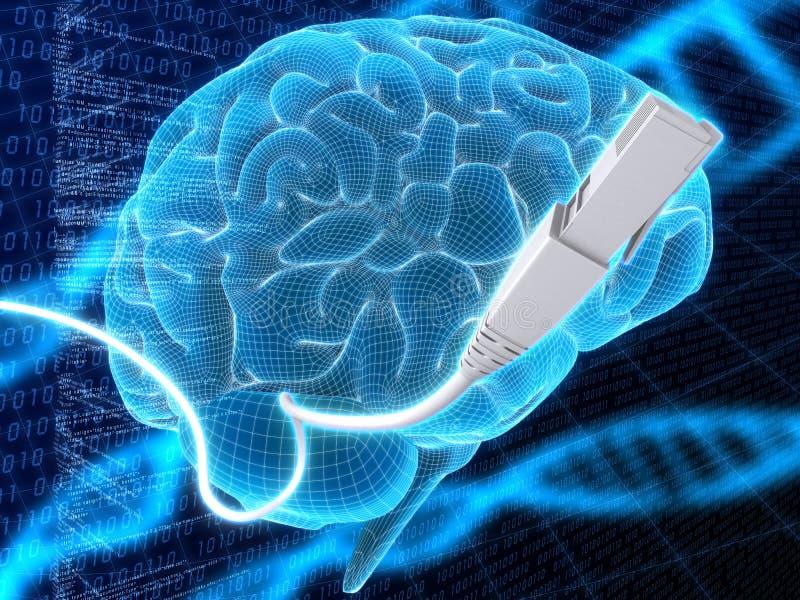 脑子电缆 库存例证