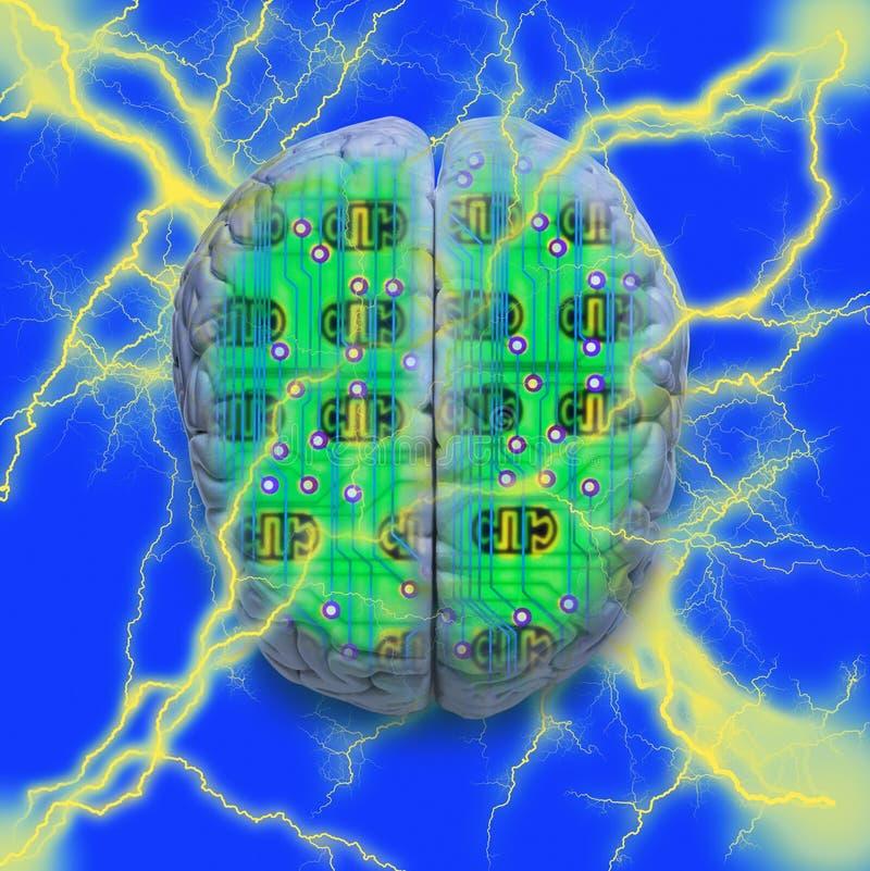 脑子电路计算机 库存例证