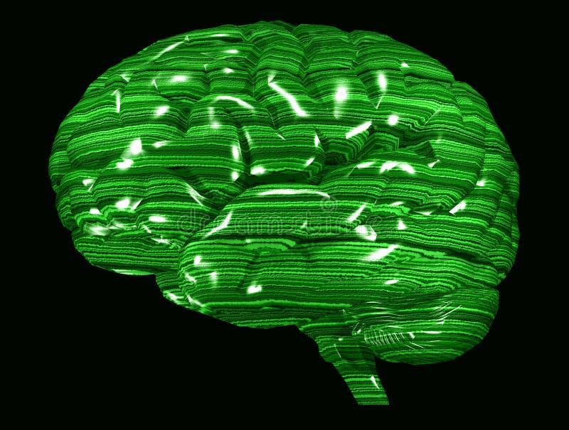 脑子绿色矩阵 向量例证