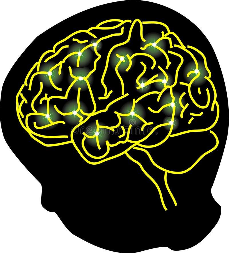 脑子连接数 向量例证