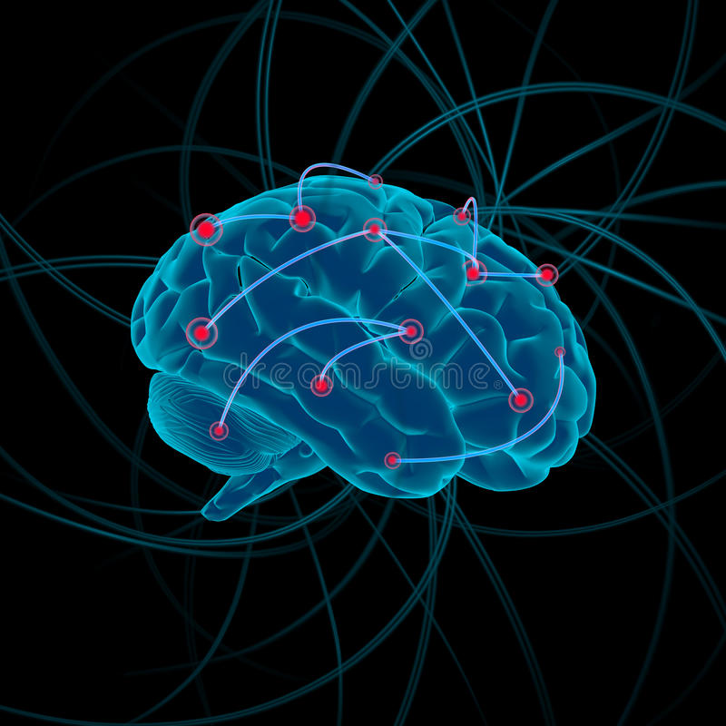 脑子bw颜色四例证差异 免版税图库摄影