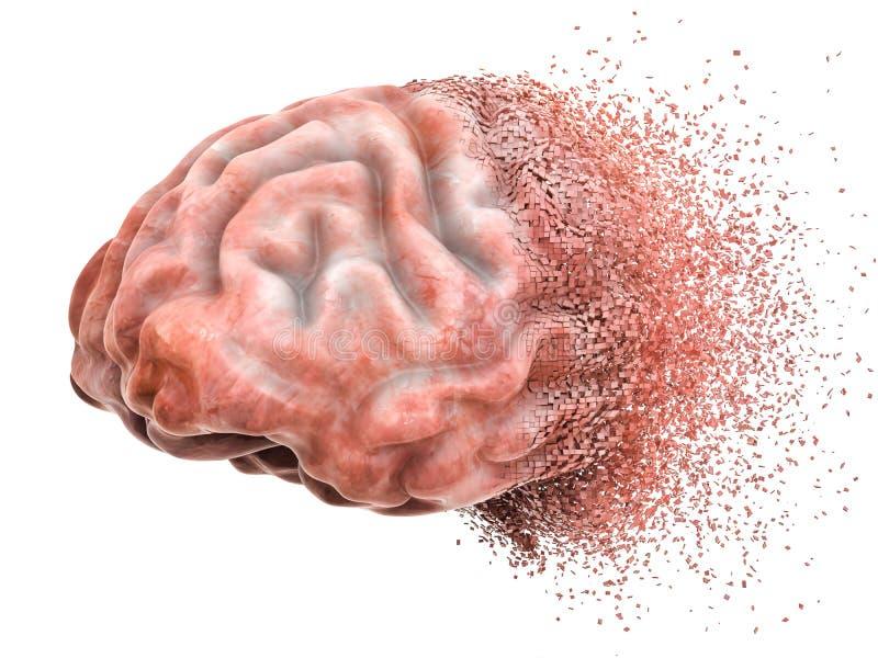 脑疾病或破坏,记忆损失概念 3d翻译 向量例证